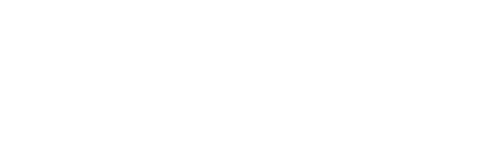 Dsimple
